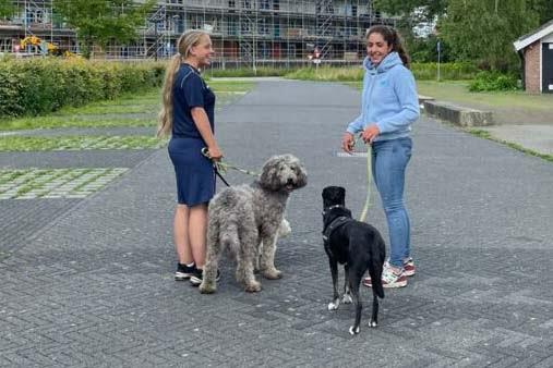 Hondengedragskundige Sabeau Mallouk tijdens een training met Liekie